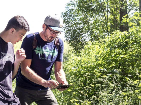 Fritz Herkenrath erklärt einem jungen Mann beim Shinrin-Yoku Nachwuchs die Bedeutung von abgefallenen Blättern im Wald.