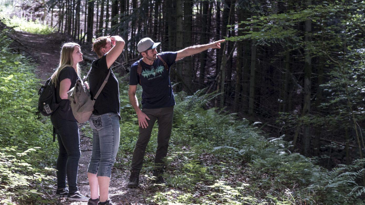 Drei Personen stehen auf einem Waldweg. Fritz Herkenrath erklärt den Wald, die Bäume und das Waldbaden.