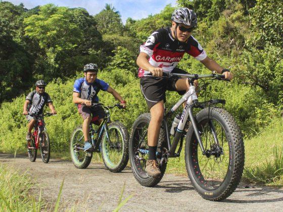 Drei Mountainbiker auf einer Fahrradtour im Wald.