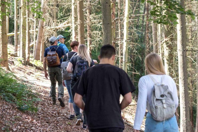 Eine Gruppe von Frauen und Männern in einem geschädigten Fichtenwald beim Waldbaden mit RobinWoods Walderlebnisse.
