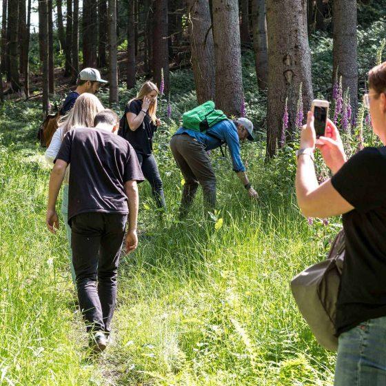 Eine Gruppe beim Waldbaden auf einer Lichtung im Wald.