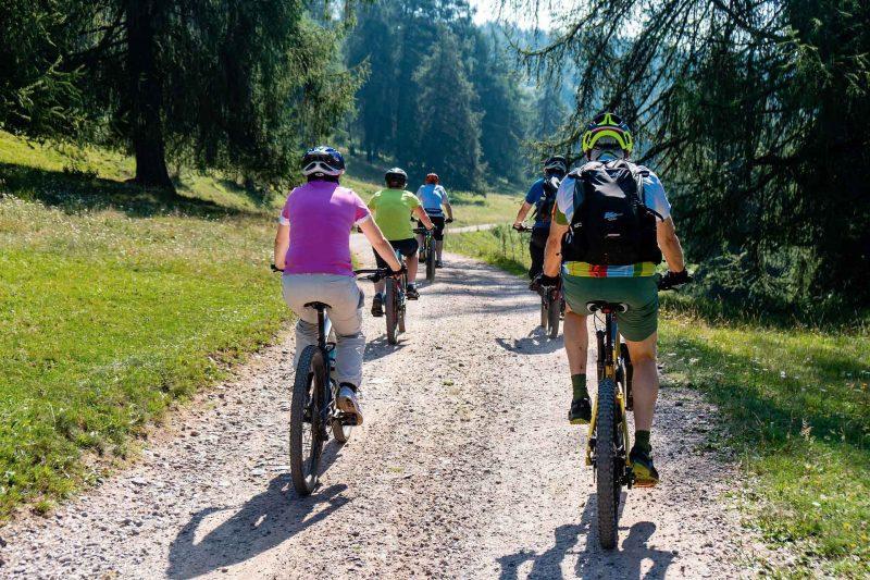 Eine Gruppe Mountainbikefahrer auf einer Schotterpiste im Siebengebirge. Eine Fahrradtour mit RobinWoods Naturerlebnisse.
