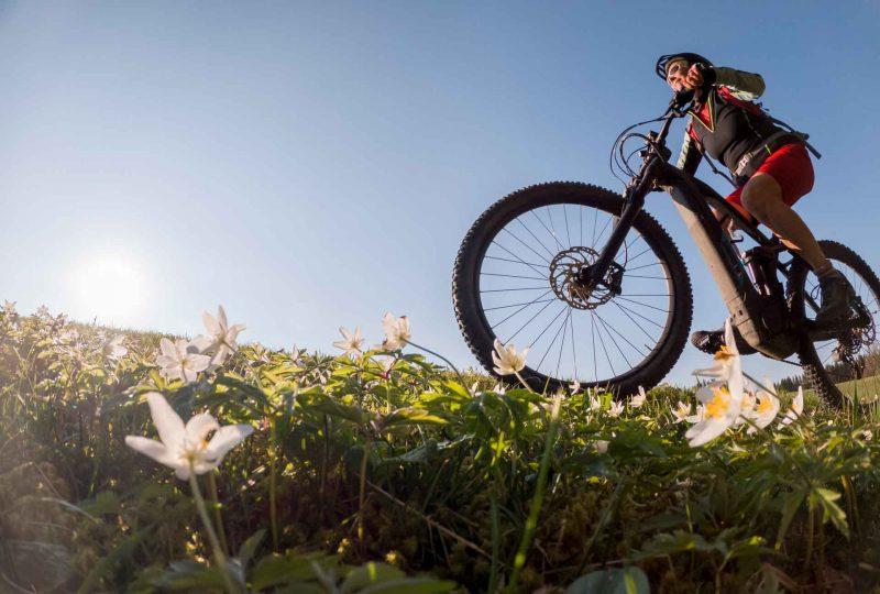 Mann auf einem E-Mountainbike von unten gesehen gegen den blauen Himmel fotografiert.