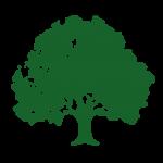 RobinWoods Baum